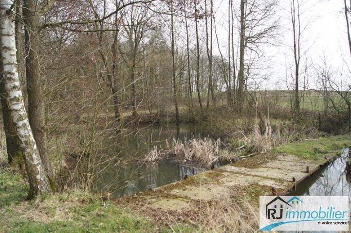 Villa - Walcourt Berzée - #1567821-9