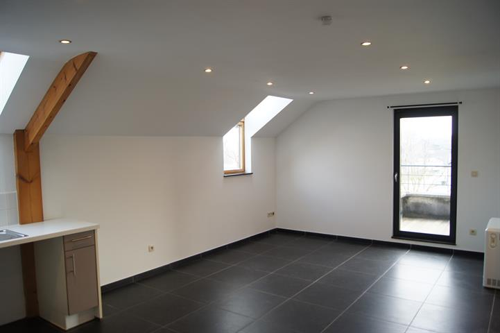 Appartement - Florennes Hemptinnelez-Florennes - #3734501-2